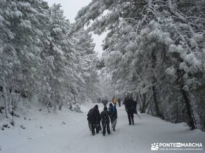 Valle de Iruelas - Pozo de nieve - Cerro de la Encinilla; senderismo nivel medio